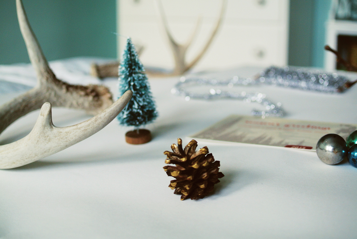 dipped pinecone holiday fun | farm fresh therapy.jpg
