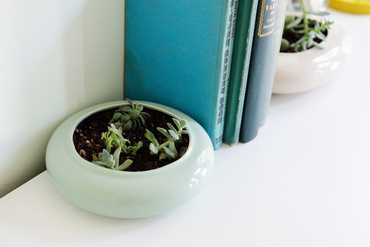 modern succulent planters | farm fresh therapy.JPG